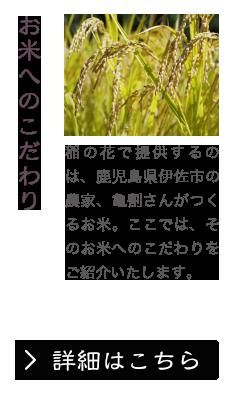 お米へのこだわり 稲の花で提供するのは、鹿児島県伊佐市の農家、亀割さんがつくるお米。ここでは、そのお米へのこだわりをご紹介いたします。